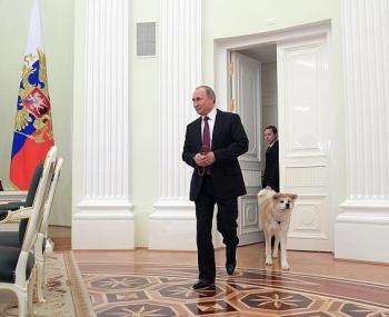 Путин взял с собой собаку на встречу с журналистами из Японии
