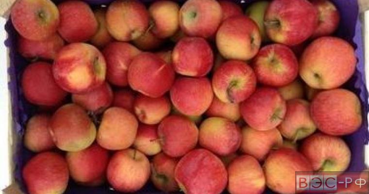 запрет на фрукты из Молдавии