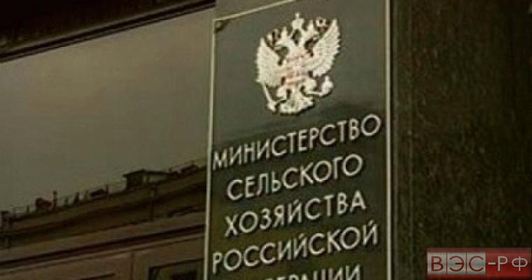 Россия ужесточила порядок ввоза продукции через Евросоюз