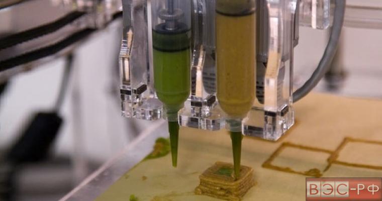 пищевой 3-D принтер