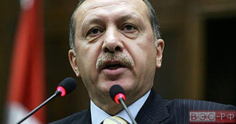 Эрдоган: уличные протесты на Украине привели к разделению страны
