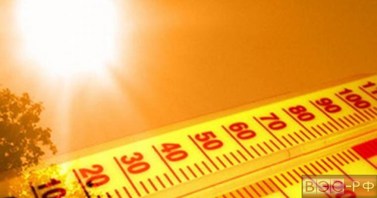 Гидрометцентр считает прошлый год аномально теплым