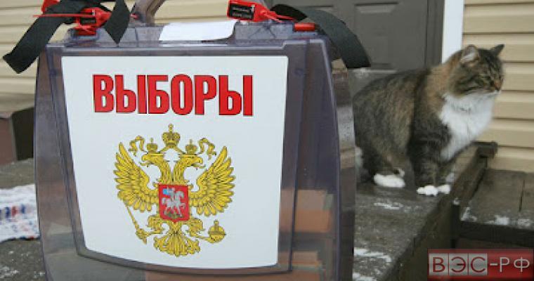 26 апреля в Московской области пройдут выборы