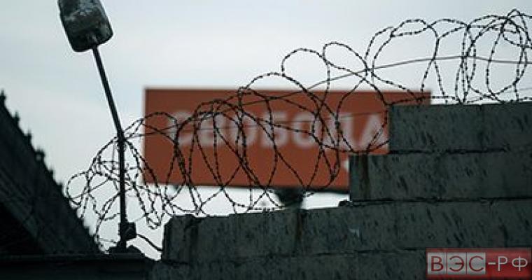 Заключённых освободят