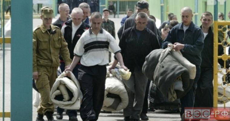 Амнистия затронула более 33 тысяч человек