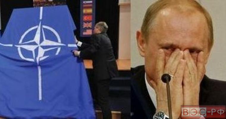 США расширит НАТО назло Путину