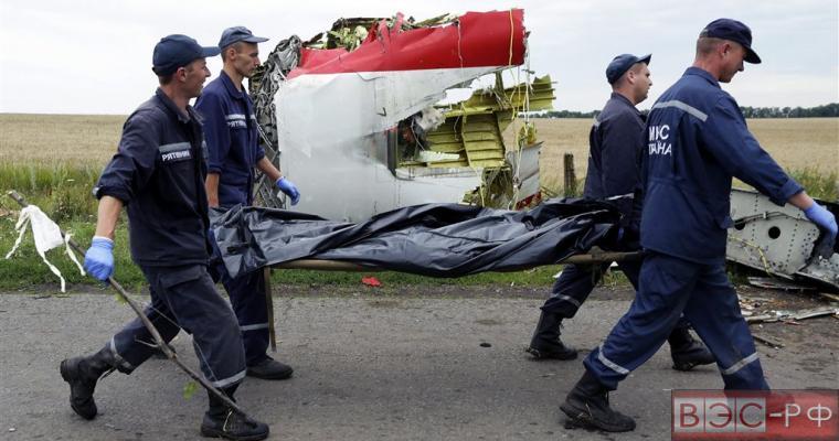 Экипаж малайзийского Boeing в последний момент мог видеть зенитную ракету