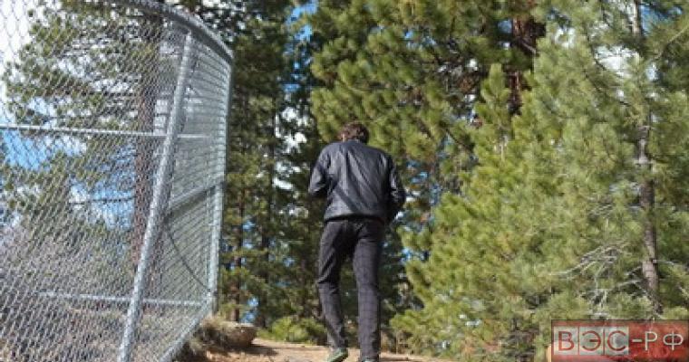 Изменение в законе о строительстве в лесной зоне