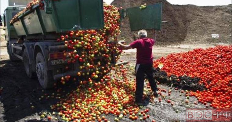 фермеры ЕС требуют отмены антироссийских санкций