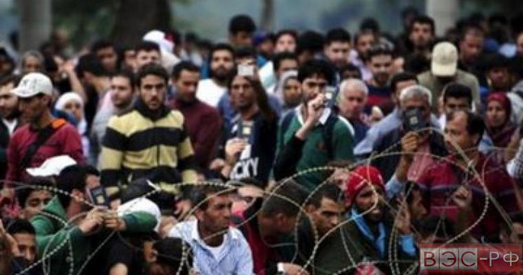 В Австрии предложили способ решения кризиса беженцев