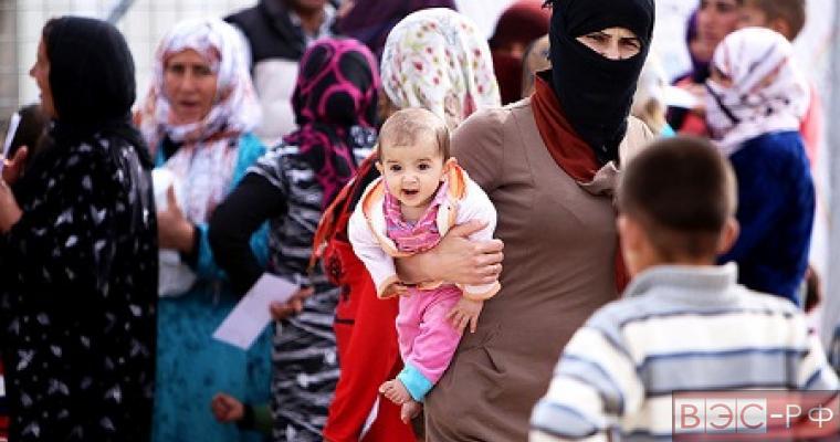 Беженцев из Сирии должна принять Россия