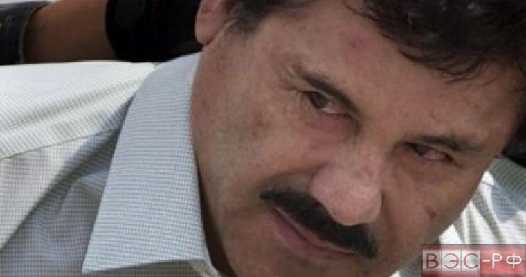 Мексиканская наркокартель грозится покарать ДАИШ