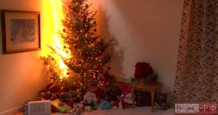 Загоревшаяся елка удила двух девочек в Красноярском крае