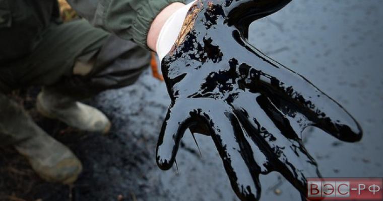 Россия избавилась от сырьевой зависимости экспорта