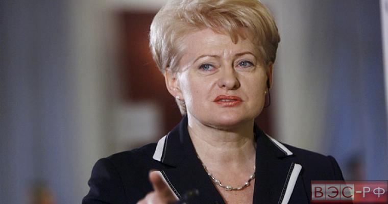 Литва пока не будет закупать сжиженный природный газ у США