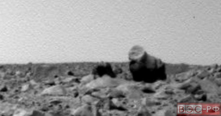 На Марсе обнаружили верблюда и гориллу
