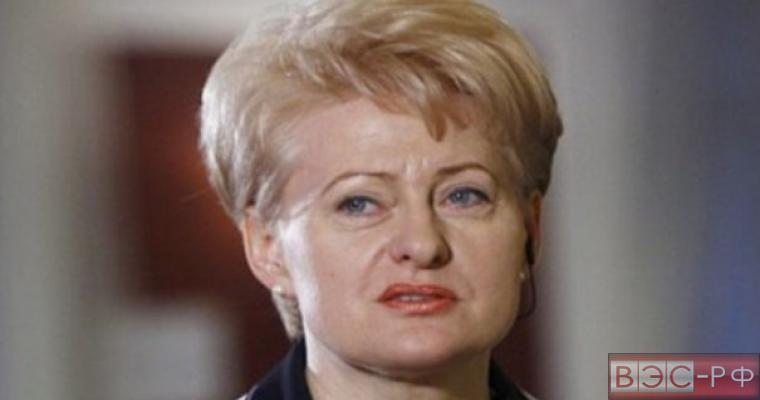 Президент Литвы Даля Грибаускайте выступила с неожиданными обвинениями в адрес России