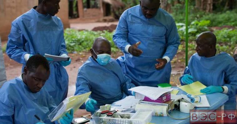 Вспышку лихорадки Зика признали чрезвычайной ситуацией в мировом здравоохранении