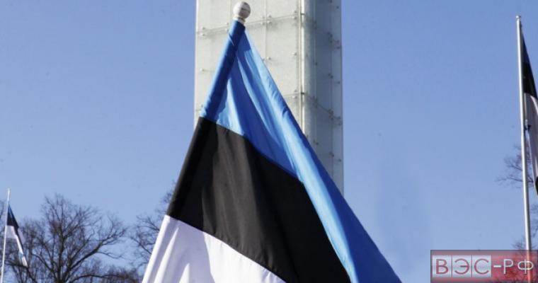 Расчистке границы РФ и Эстонии помешали землевладельцы