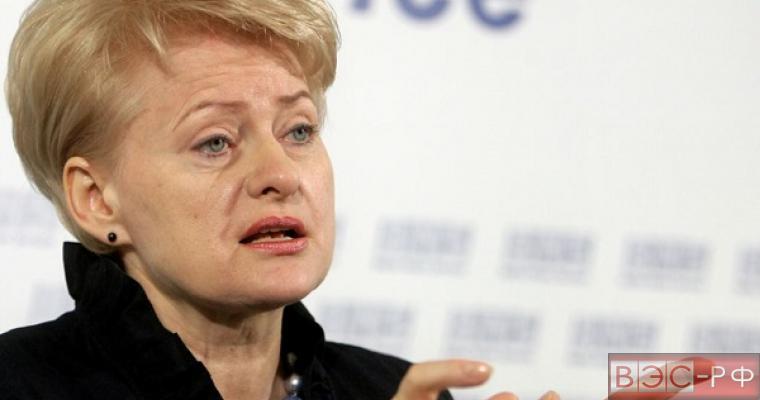 """Президент Литвы готовится к """"горячей войне"""" с Россией"""