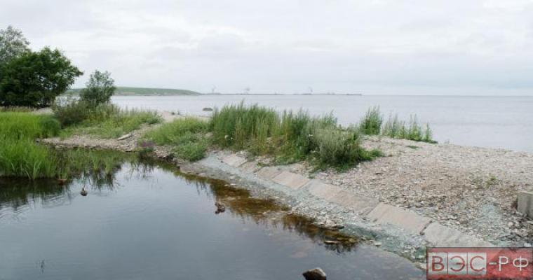 Берег в заливе Лохусалу в Эстонии