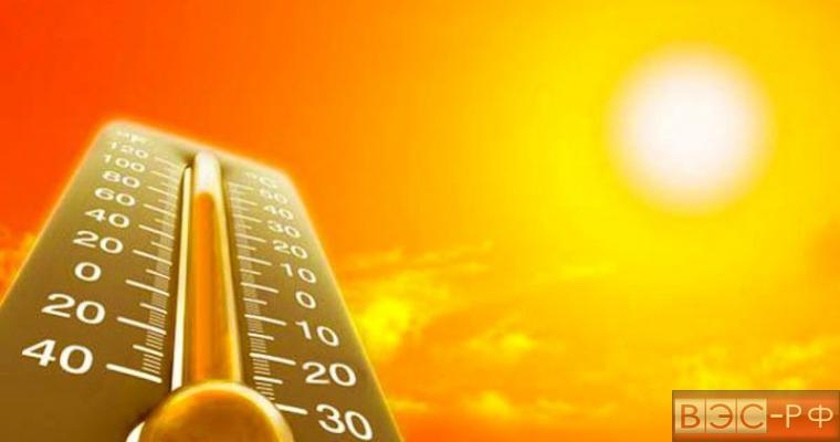 Аномальная жара в России