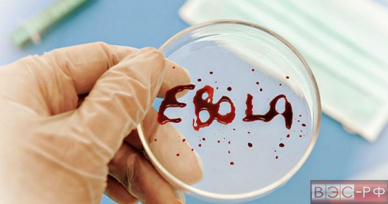 Гостья из Африки. Как закончилась эпидемия Эболы и начнётся ли она снова
