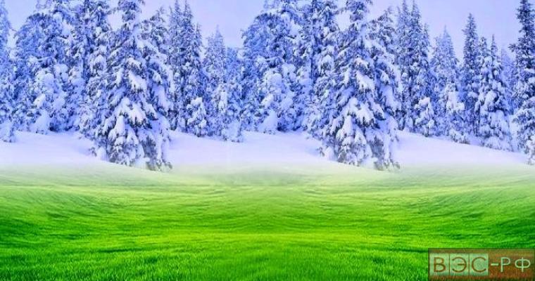 Учёные: зима и лето могут поменяться местами