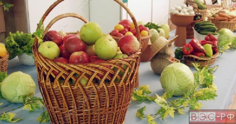 Корзина с польскими яблоками