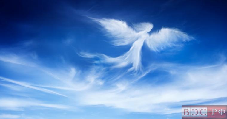 видеоролик с ангелом покорил Сеть