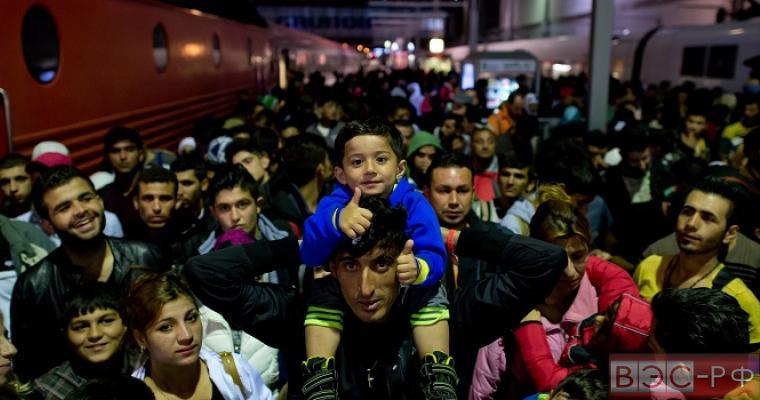 Сирийский беженец с детьми и женами получил пособия