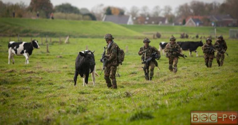 В Польше провалились учения спецназа