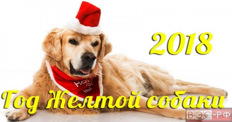 Желтая Собака - символ китайского Нового Года