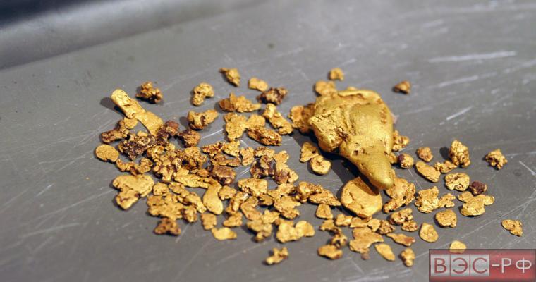 Российские учёные открыли способ добычи золота из угля