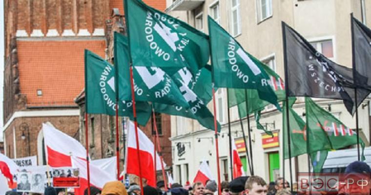 Поляки на митинге против иммиграционной политики