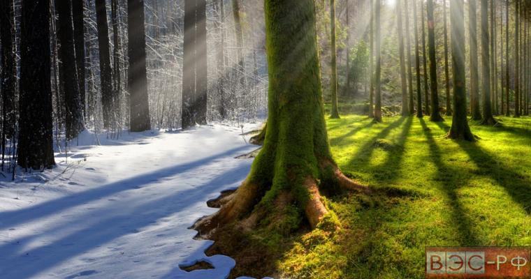в России наблюдаются неблагоприятные погодные явления